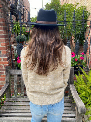 "<img src=""Sparkle-Detail-Fuzzy-Sweater-Vanilla-Back.jpg"" alt=""sparkle detail fuzzy sweater in vanilla back view"">"