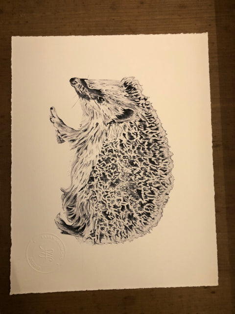 Sarah Hammond Studio Art Print Hedgehog