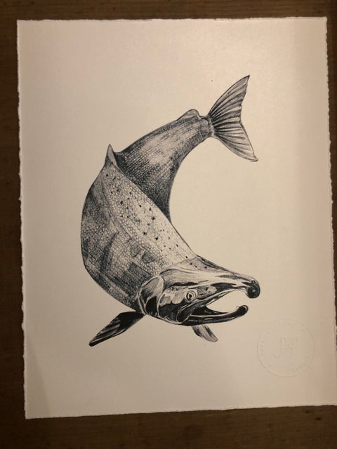 Sarah Hammond Studio Art Print Salmon
