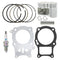 Cylinder Kit for Honda Recon 94601-15000 90551-883-000 13115-250-010 13111-HB5-000 NICHE MK1003424