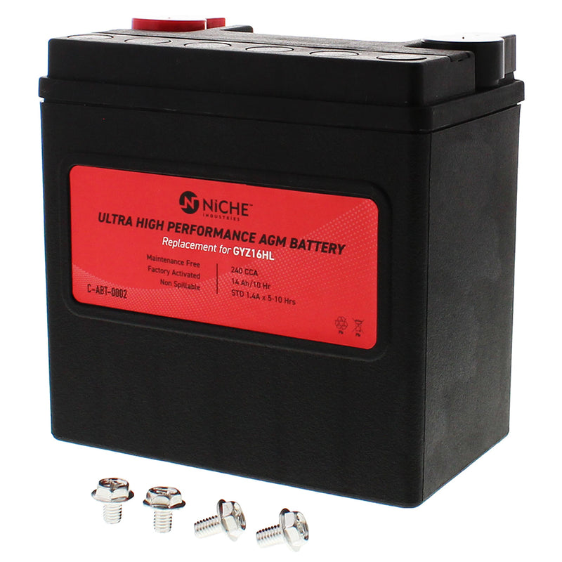 NICHE 519-CAB2224T AGM Battery for Yuasa Harley Davidson Street
