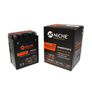 NICHE 519-CAB2228T Maintenance Free Battery