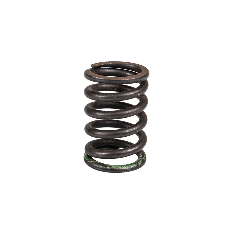 Exhaust Valve Spring for Yamaha Rhino Raptor Grizzly 5LP-12114-00-00 3YF-12114-00-00 NICHE 519-CVS2226P