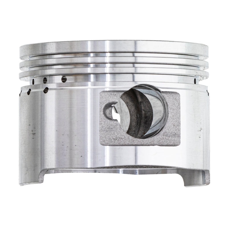 NICHE Piston Kit 0453431 0453430 0453429