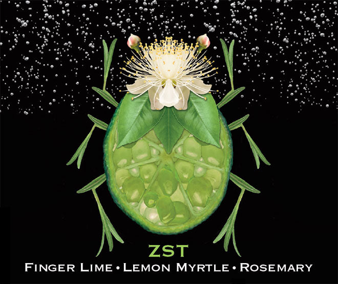 ZST Finger Lime ● Lemon Myrtle ● Rosemary [4 PACK]