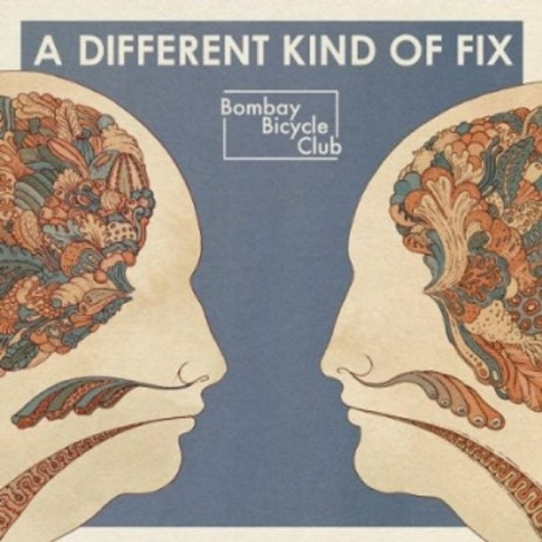 Bombay Bicycle Club - A Different Kind Of Fix: Vinyl LP