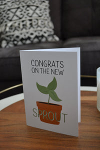 New Sprout Baby