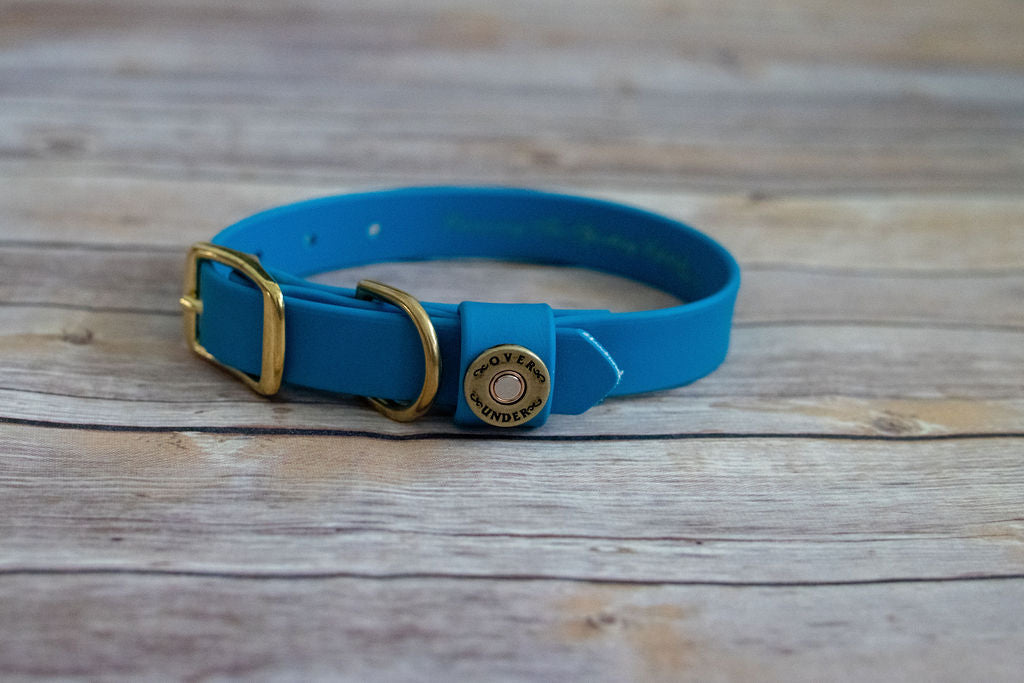 Over Under Water Dog Collar Aqua Blue