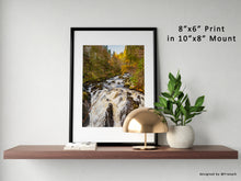 "Load image into Gallery viewer, The Hermitage Print, The Hermitage, Nature, Scotland Photography, Forest, Decor Picture, Wall Art, Art, Photography, Landscape, 8""x6"" Print"