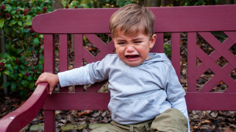 "What to do when ""no"" is your toddler's favourite word"