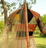Back view of Choli