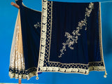 Beige net and Dark Blue Velvet Pallu Saree and with Cream Chaintally Blouse.