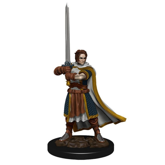 D&D Icons of the Realms Premium Figures: Male Human Cleric (93023)