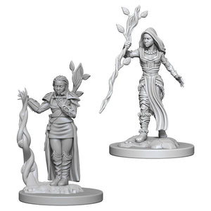 D&D Nolzur's Marvelous Unpainted Miniatures: Human Female Druid