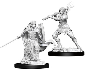 D&D Nolzur's Marvelous Unpainted Miniatures: Female Human Paladin