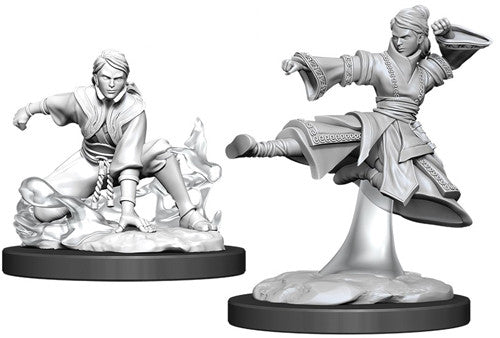 D&D Nolzur's Marvelous Unpainted Miniatures: Female Human Monk