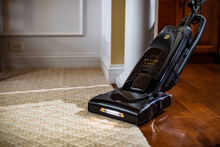 Load image into Gallery viewer, R25 PREMIUM PET UPRIGHT VACUUM