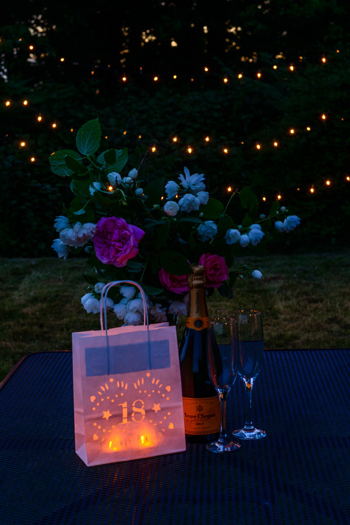 18th Birthday Decorations Luminary bags lantern bags for the