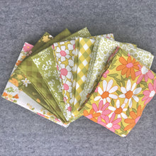 Load image into Gallery viewer, Blooming Bunch by Maureen McCormick for Moda Fat Quarter Bundle By Color Way