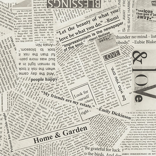 Carrie Bloomston Wonder Wide Back Newsprint 108