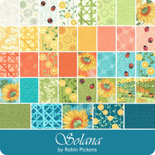 Load image into Gallery viewer, Solana by Robin Pickens Layer Cake 48680LC Moda Precuts