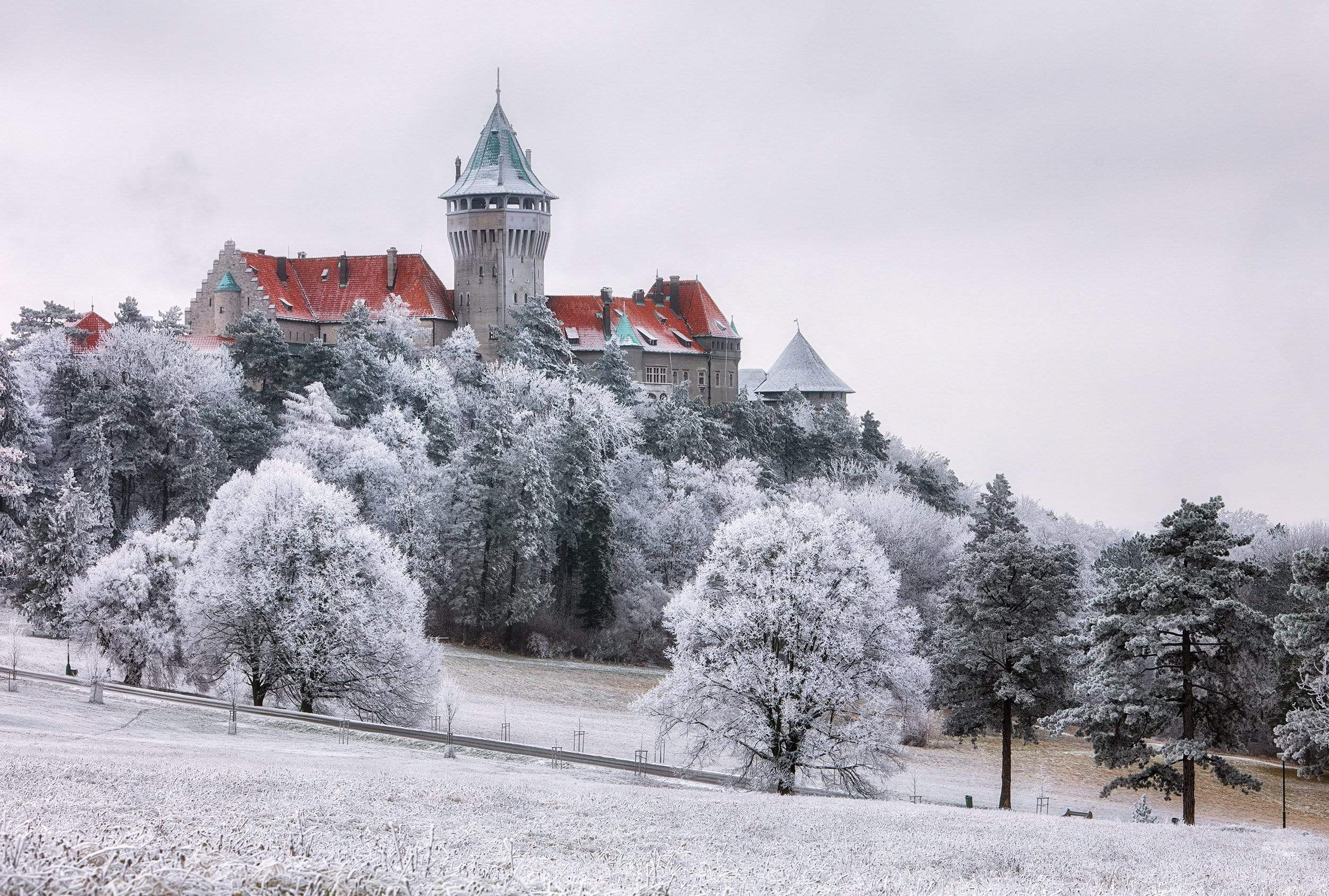 Smolenice Castle with snowy trees