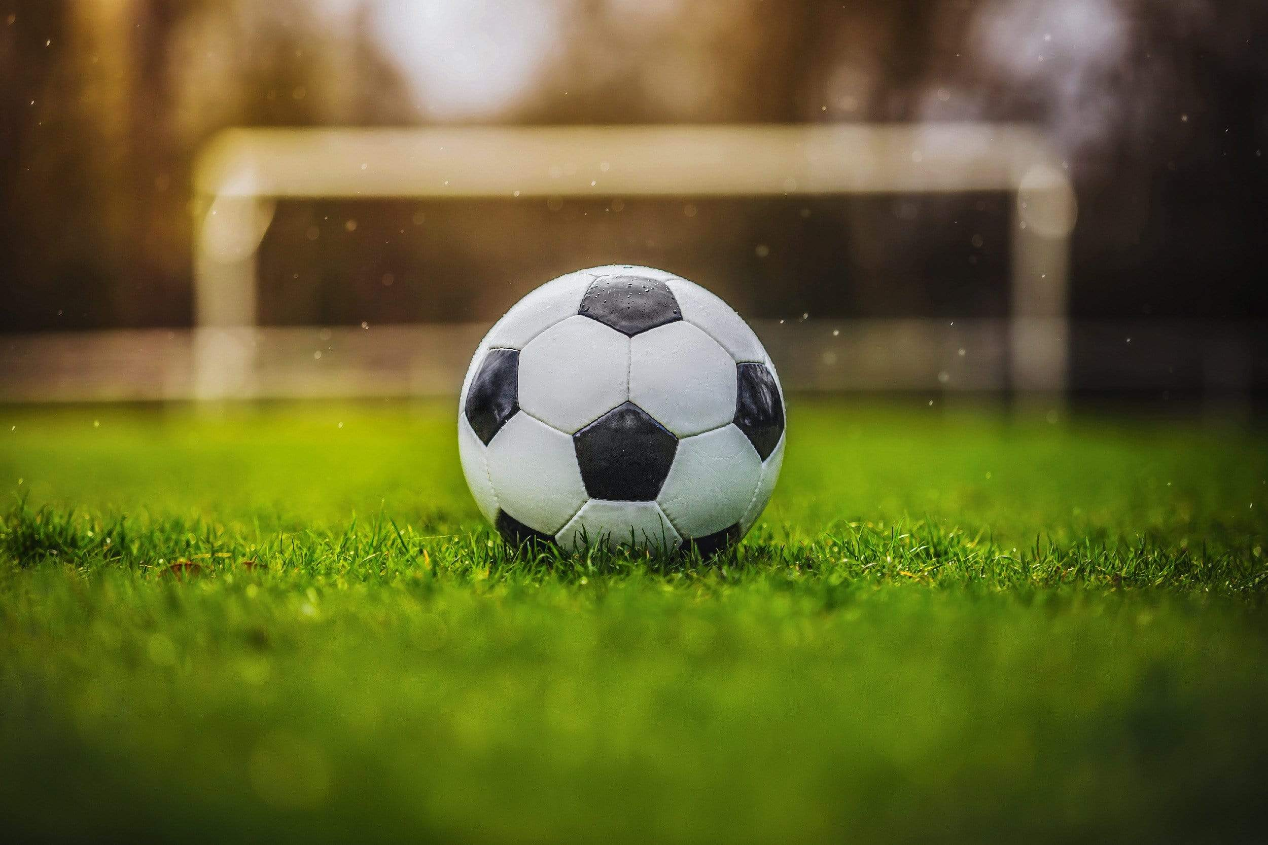 Soccer ball with goal background