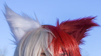 Shoto todoroki ears