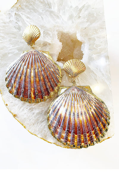 Perfect Shell Earrings