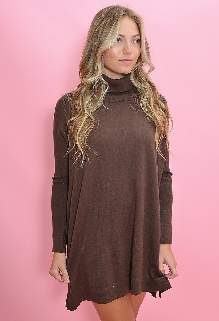BB Dakota Hug Me Tight Sweater Dress in Brown