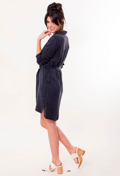 Carter Cupro Shirt Dress