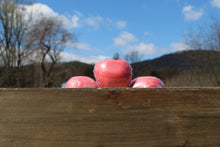 Load image into Gallery viewer, Country Apple handmade soap