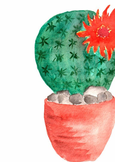 Cactuses Hand-Painted Watercolor Clipart