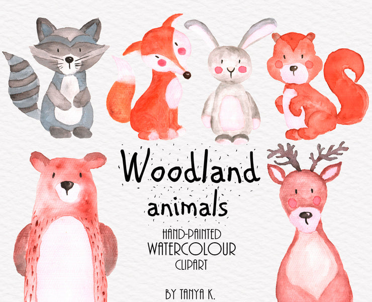 Woodland Animals Watercolor Clipart