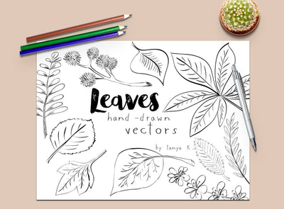 Leaves Vector-Digital Graphics-Doodle Clipart-Leaves Clip Art-Hand Drawn Leaves-Instant Download-Commercial Use-Autumn Leaves-Fall Leaves