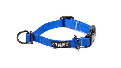 Extra Small Everyday Collar™ - Blue