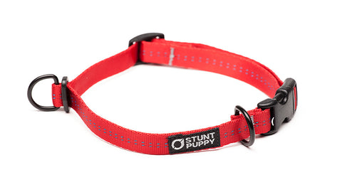 Small Everyday Collar™ - Red