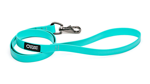Dry Leash™ - Teal