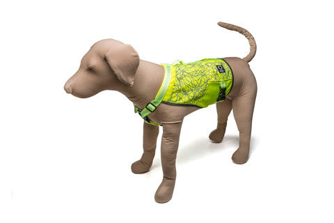 Go Dog Glo™ High Visibility Vest - Medium_Large