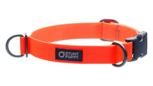 Regular Orange Collar