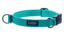 Regular Teal Collar