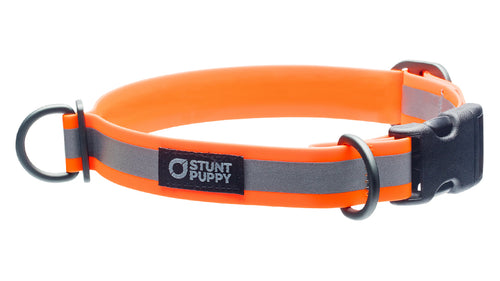 %Show% %Size:Regular% %Alt:Regular Orange Collar%