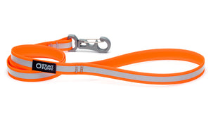 Go Dog Glo™ Dry Leash™