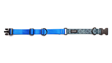 Blue Stunt PuppyID Collar - BlackID