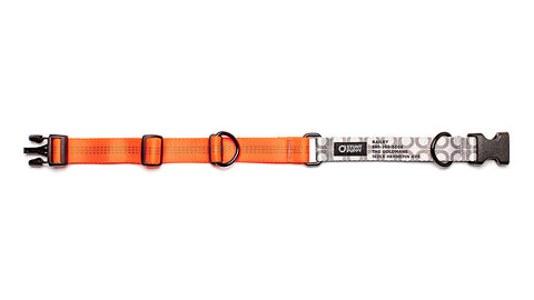Orange Stunt PuppyID Collar - SilverID