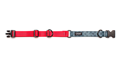 Red Stunt PuppyID Collar - BlackID