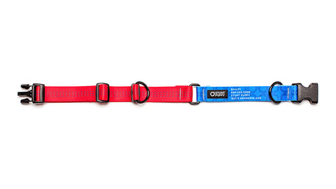 Red Stunt PuppyID Collar - BlueID