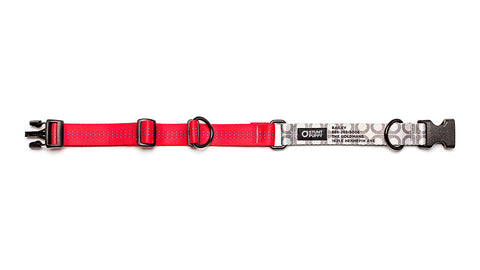 Red Stunt PuppyID Collar - SilverID