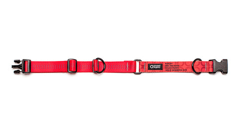 Red Stunt PuppyID Collar - RedID