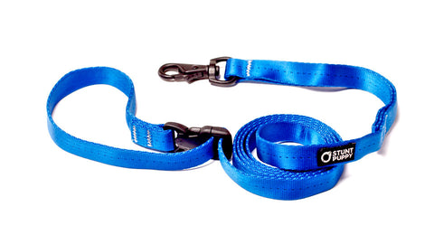 Small Everyday Leash™ - Blue